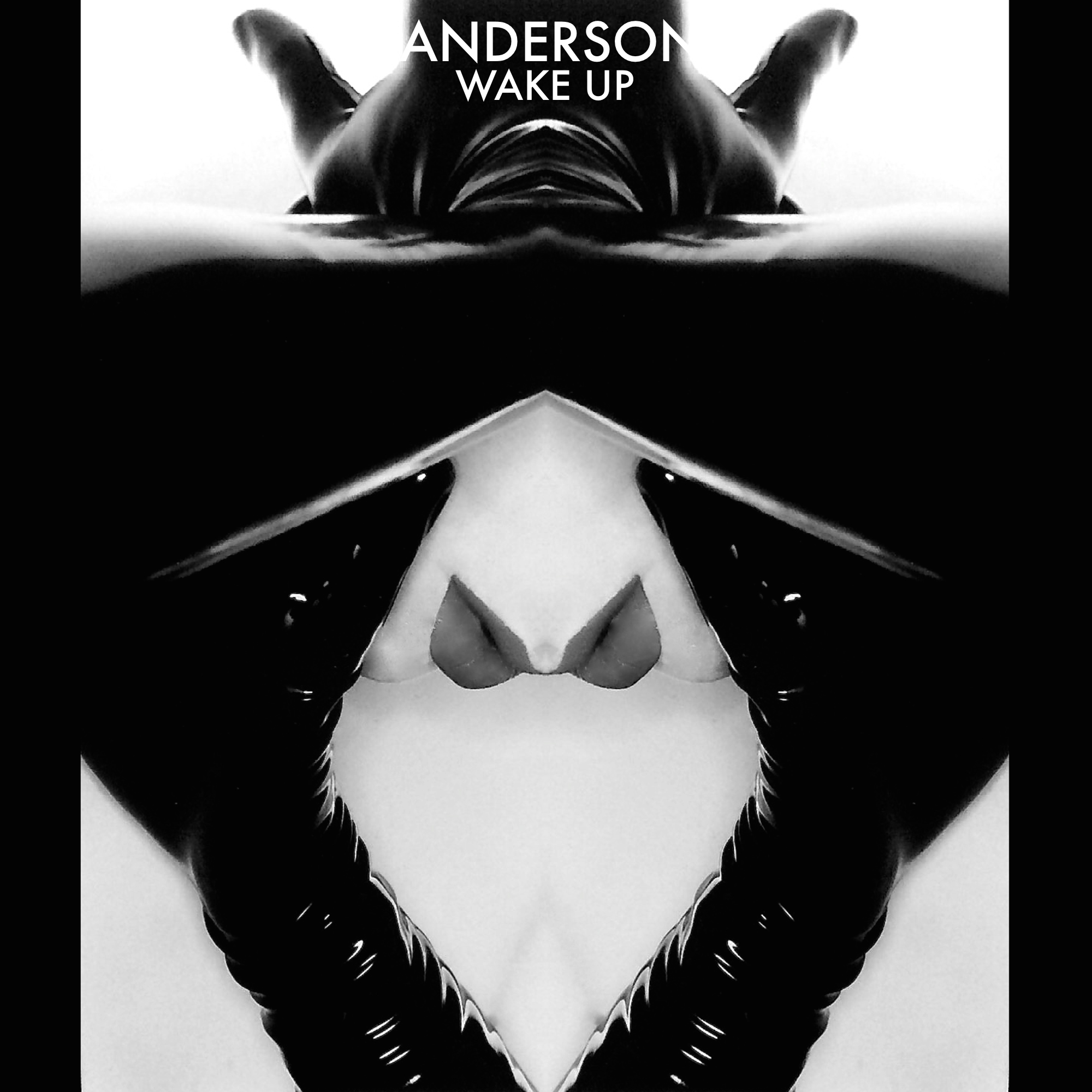 ANDERSON-WAKE-UP SINGLE COVER ARTWORK W:TEXT
